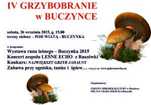 PLAKAT GRZYBY 2015