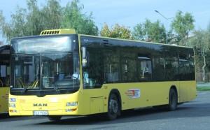 autobus4-male