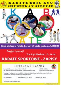 2016-04-11 Zapisy plakat Karate Siedlce w1